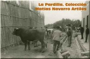 Tyldet-La Pardilla_Col_Matías Navarro